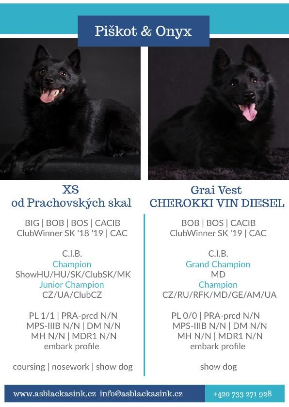 Piskot&Onyx (1)-pdf